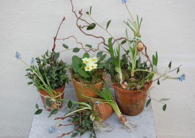Seasonal Spring Pots