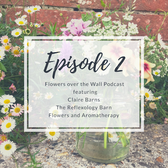 Sarah talks Flowers with The Reflexology Barn